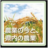農業の今と、県内の農業